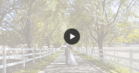 Watch Malibu Wedding Video