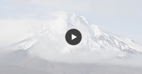 Watch Taranaki wedding video